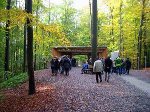 Eingang Baumwipfelpfad