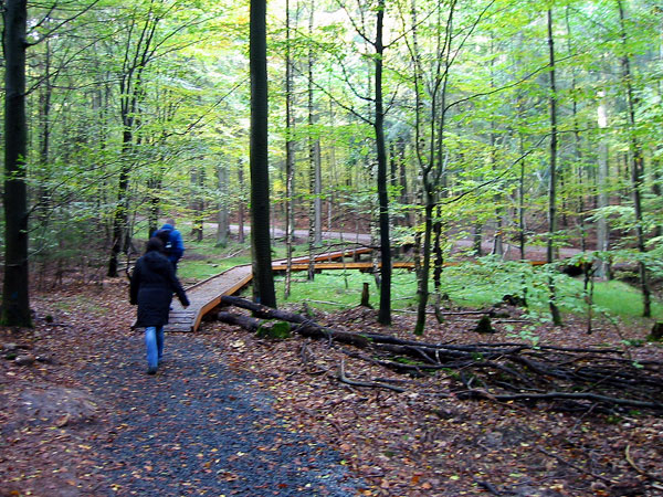 steigerwald ebrach wandern