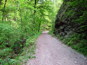 Kiental Wanderweg