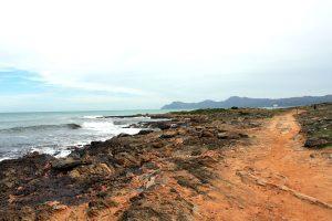 Küste nach Can Picafort
