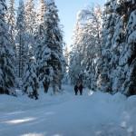 Ochsenkopf Winterwanderweg