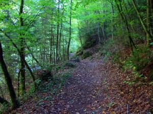 Wanderweg an Püttlach